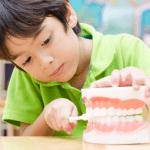小学生でもわかる「歯周病」