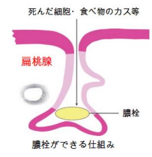 nouengadekiru