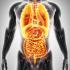 内臓が悪いと口臭がする!胃腸、肝臓、糖尿病、癌などの病気が原因