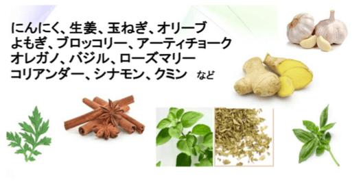 抗菌作用のある食物